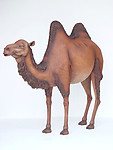 Camel Statue Life Size