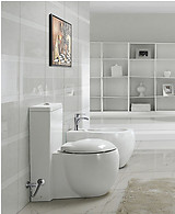 One Piece Dual Flush Modern Bathroom Toilet - Vinci
