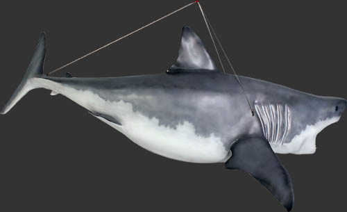 Hanging Great White Shark 11FT Life Size Statue