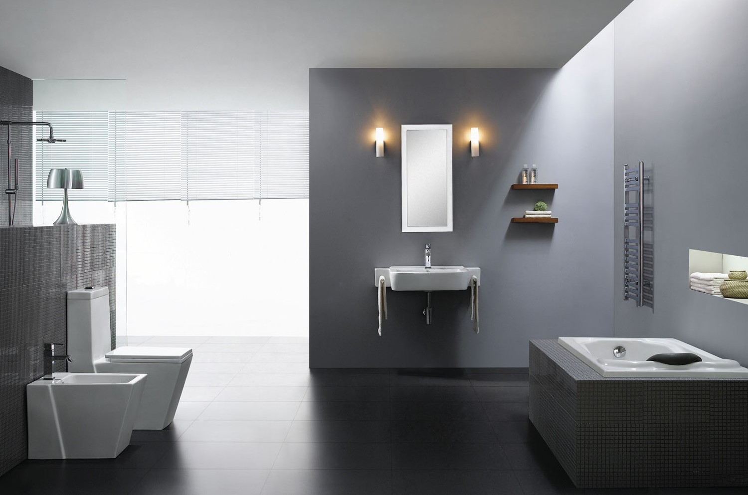 Medio modern bathroom toilet for Modern washroom designs
