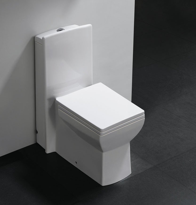 Pesaro   One Piece Dual Flush Modern Bathroom Toilet