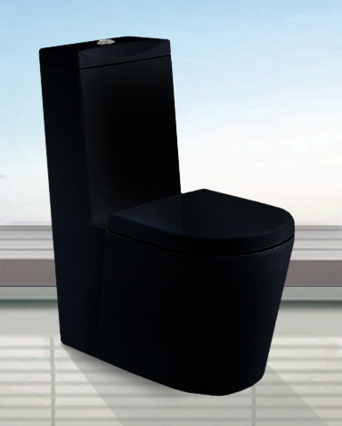 Dual flush bathroom toilets camillo modern bathroom toilet 28 tweet