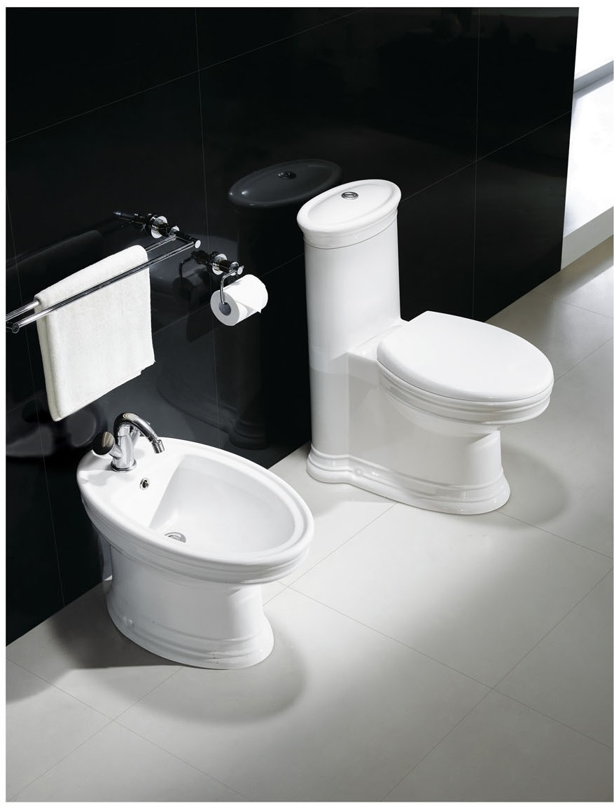 bidet bathroom bidet modern bidet capani. Black Bedroom Furniture Sets. Home Design Ideas