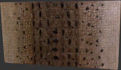 Crocodile Skin Wall Panel - Modern Wall Decor