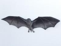 Bat Hanging Replica Life Size
