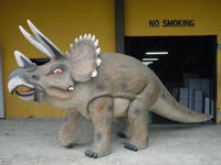 Huge Triceratops Statue Life Size Dinosaur