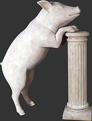 Curious Pig Statue - Roman Stone Finish