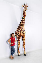 Giraffe Statue Wall Sculpture 12FT