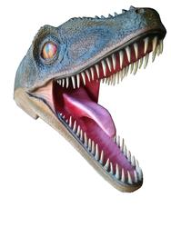 Velociraptor Head Wall Mount