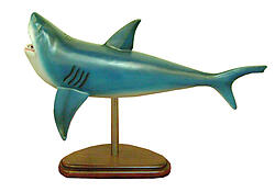 Shark on Base 2.5FT