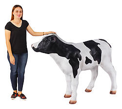 Calf Statue Life Size Holstein Black and White 4FT