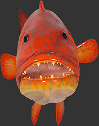 Giant Coral Trout Statue