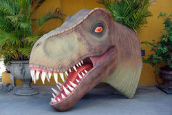 T-Rex Head Huge Life Size Wall Mount Statue