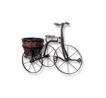 Antique Iron Bicycle with Round Basket