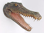 Crocodile Head Statue Wall Mount Life Size Statue