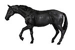 Black Stallion Horse Life Size Statue Working