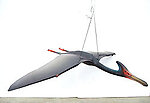 Pterodactyl Flying Life Size Statue Hanging 4 ft