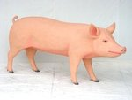 Pig Realistic Life Size Statue Replica 5.5FT