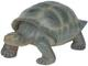 Green Turtle Life Size Statue