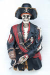 Skeleton Pirate Bust Statue