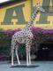 Huge Giraffe Statue Life Size 19FT