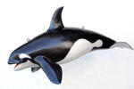 Orca Whale Life Size Statue Hanging 4FT