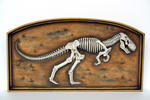 T-Rex Fossil In Frame Wall Decor