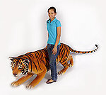 Bengal Tiger Life Size Statue